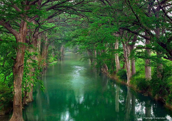Картинки про природу - самые красивые, удивительные, прекрасные 1