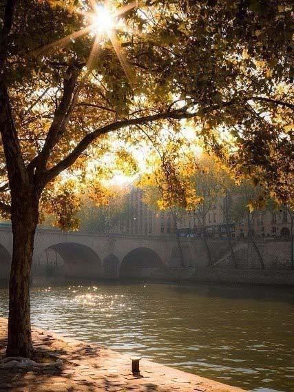 Картинки про природу - самые красивые, удивительные, прекрасные 5