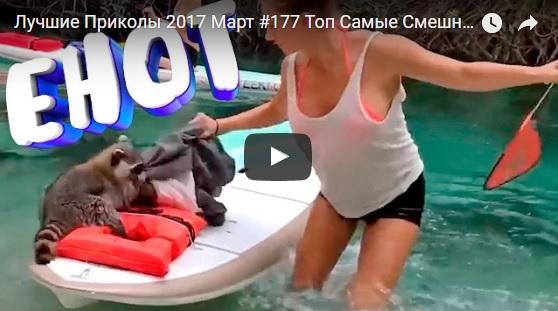 Видео приколы ржачные до слез 2017 - смотреть бесплатно, онлайн