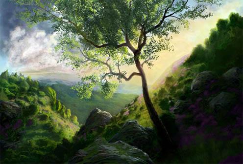 Дерево - фото, картинки, красивые, удивительные, прекрасные 11