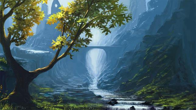 Дерево - фото, картинки, красивые, удивительные, прекрасные 9