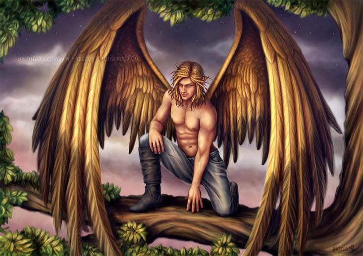 Картинки ангелов с крыльями - красивые, прикольные, интересные 2