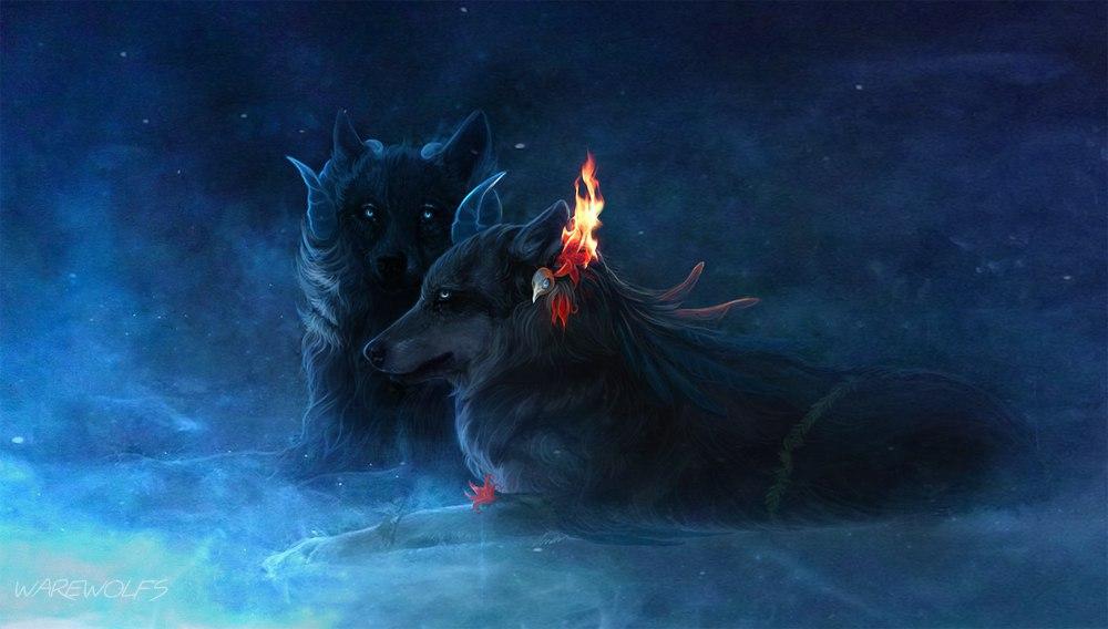 Картинки волков - скачать, смотреть, красивые, прикольные 16