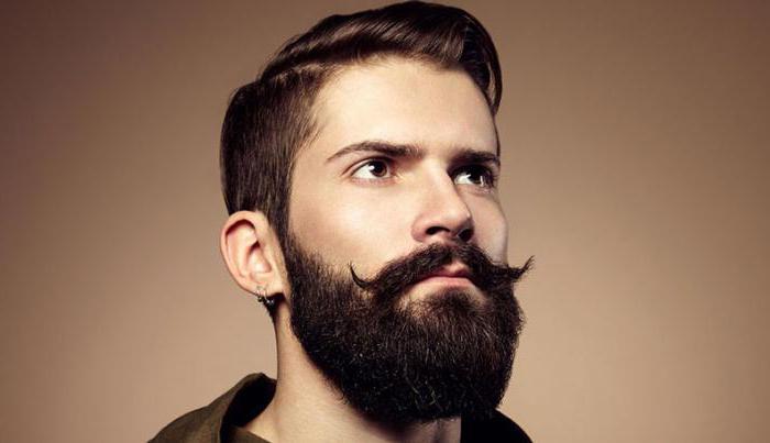 Красивые бороды у мужчин - фото, картинки, смотреть бесплатно 7