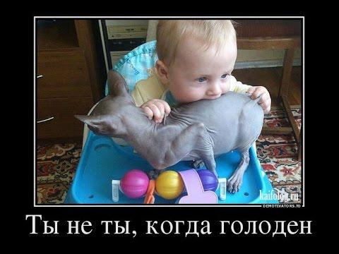 Смешные демотиваторы про детей - прикольные, веселые, забавные 1