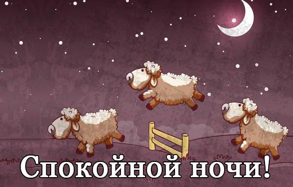 Смешные картинки спокойной ночи - скачать, смотреть, прикольные 13