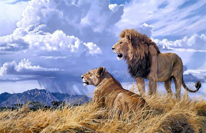 Красивые картинки львов и львиц - удивительные, прикольные и крутые 1