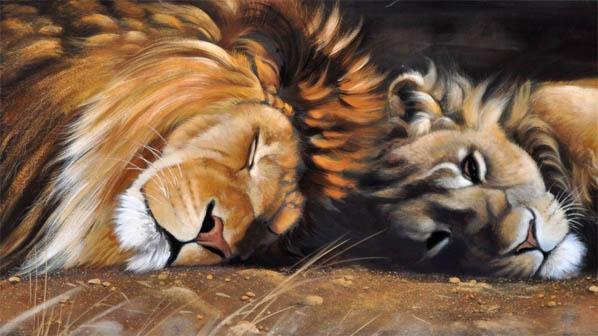 Красивые картинки львов и львиц - удивительные, прикольные и крутые 11