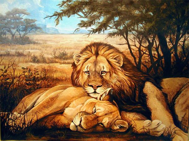 Красивые картинки львов и львиц - удивительные, прикольные и крутые 8