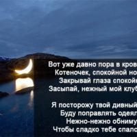 Пожелания спокойной ночи девушке в стихах - красивые, прикольные 6