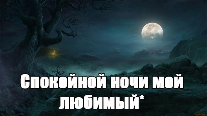 Пожелания спокойной ночи любимому парню - своими словами, красивые, приятные 2