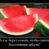 Смешные и ржачные новые демотиваторы - прикольные, свежие, 2017 1