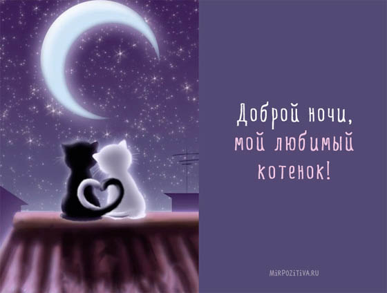 Спокойной ночи картинки любимому - красивые, прикольные, веселые 10