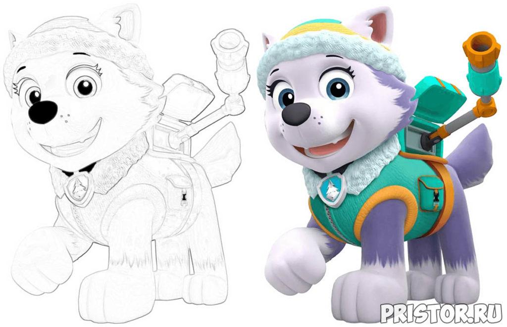Щенячий патруль раскраска для детей - прикольные и красивые 3
