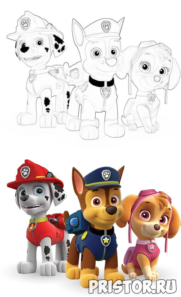 Щенячий патруль раскраска для детей - прикольные и красивые 8