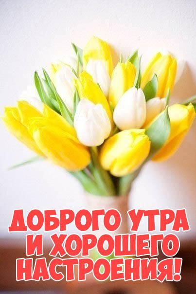Доброго утра и хорошего настроения - скачать бесплатно картинки, открытки 2