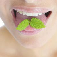 Как убрать запах изо рта дома - эффективные способы и советы 2