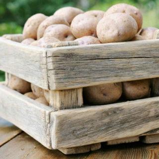 Как хранить картошку зимой - главные особенности и рекомендации 1