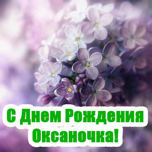 Картинки С Днем Рождения с именем Оксана - красивые и приятные 1