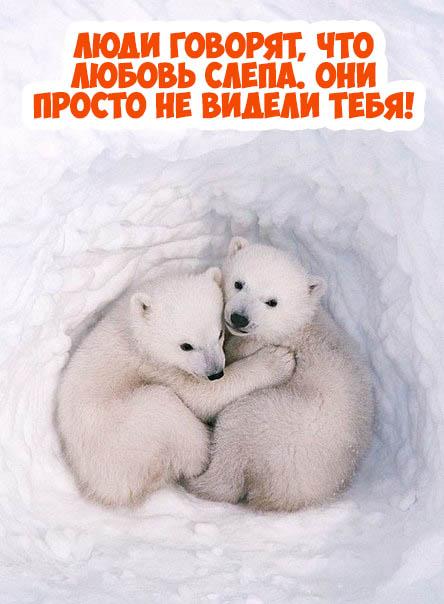 Красивые и прикольные открытки про любовь - скачать бесплатно 14