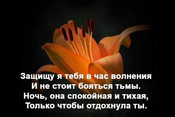 Красивые романтические пожелания спокойной ночи - смотреть, скачать 3
