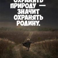 Красивые цитаты про природу - мудрые, интересные и со смыслом 5