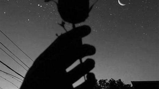 Красивые черно-белые картинки на аву - прикольные и классные 14