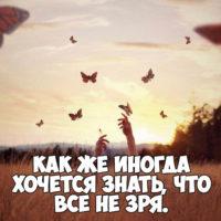 Мудрые цитаты и афоризмы о жизни - очень интересные и красивые 12