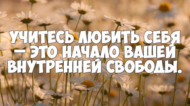 Мудрые цитаты и афоризмы о жизни - очень интересные и красивые 6