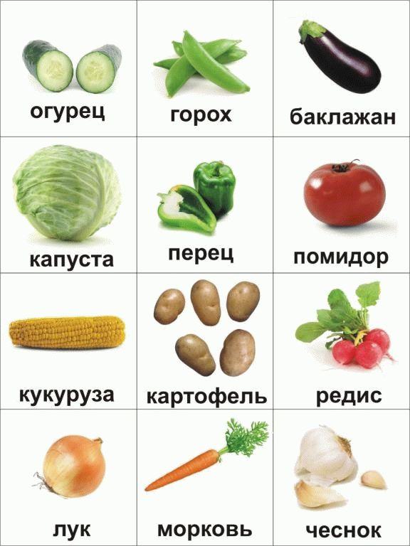 Овощи картинки для детей карточки, смешные