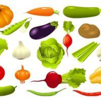 Овощи картинки для детей - подборка, очень прикольные и красивые 3