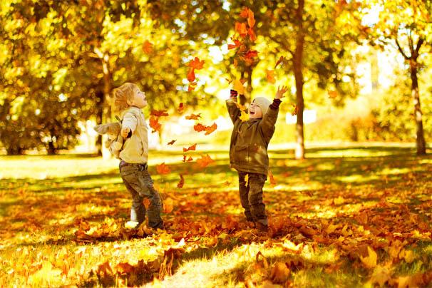 Осень картинки для детей и малышей - прикольные и красивые 2