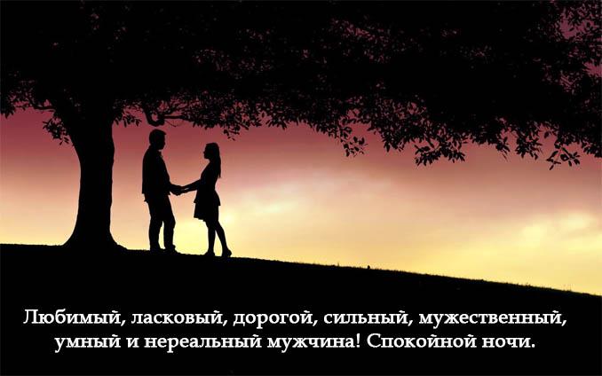 Пожелания спокойной ночи мужчине - своими словами, очень красивые 10