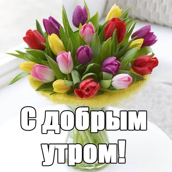 Смешные поздравления с добрым утром маме