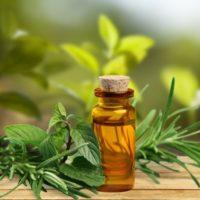 Эфирное масло ладана - свойства и применение, состав и противопоказания 2