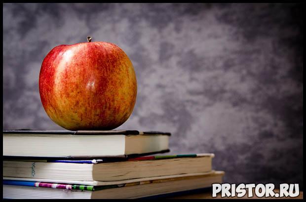 Интересные факты про школу и школьников - необычные и удивительные 1