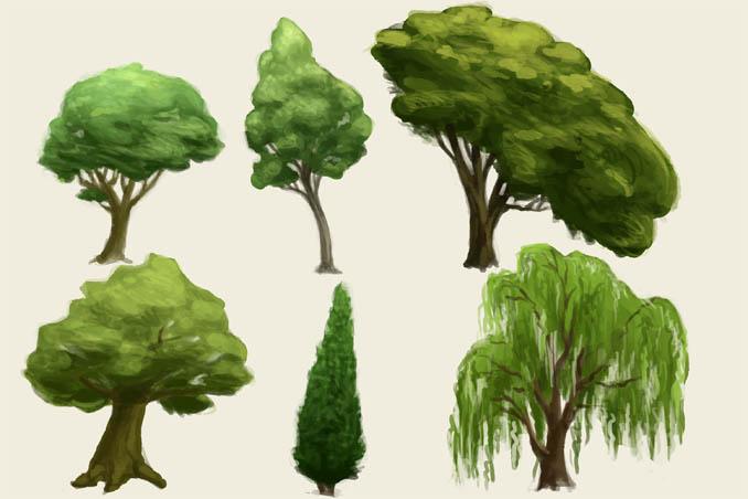 Как рисовать деревья карандашом поэтапно - хвойные и лиственные 3