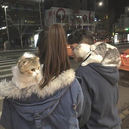 Картинки на аватарку парень с девушкой - очень милые и красивые 2