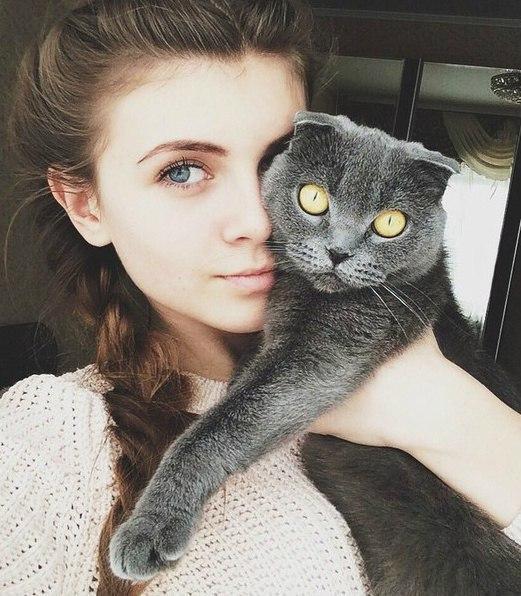 Картинки на аву кошки и котики - самые прикольные и красивые 11