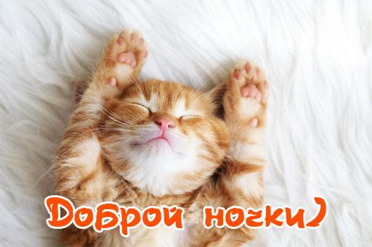 Картинки спокойной ночи и сладких снов - самые красивые, приятные 12