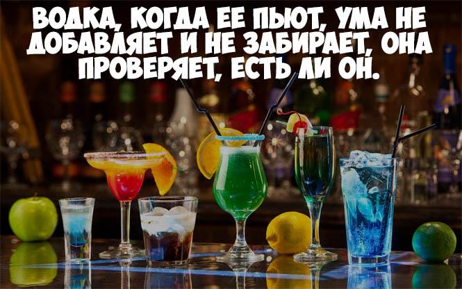Красивые и прикольные цитаты про алкоголь - со смыслом, интересные 12