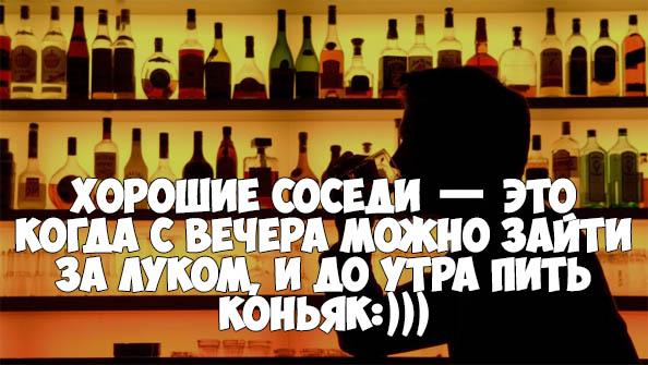 Красивые и прикольные цитаты про алкоголь - со смыслом, интересные 14