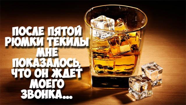 Красивые и прикольные цитаты про алкоголь - со смыслом, интересные 9