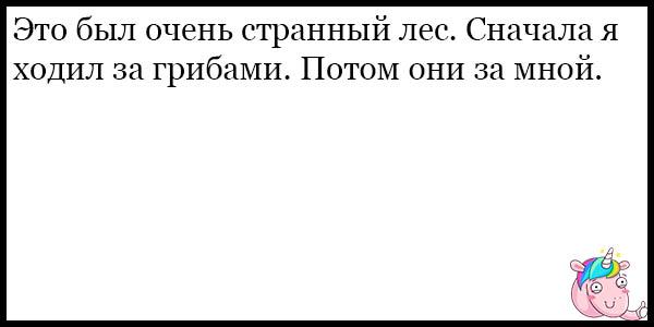 Смешные и веселые анекдоты до слез - новые, 2017, подборка №45 4