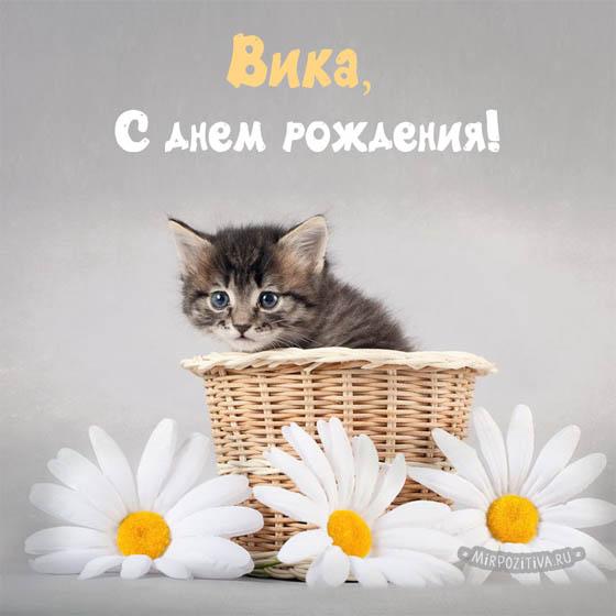 С Днем Рождения Вика - скачать бесплатно поздравления, красивые 2