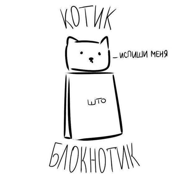 Картинки котиков для срисовки - очень интересные, красивые и легкие 3