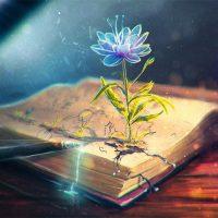 Красивые картинки для вдохновения и настроения - самые прикольные 4