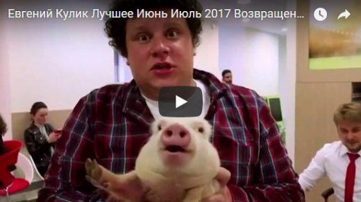 Смешные и веселые подборки видео с Евгением Куликом - 2017