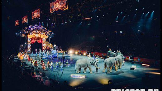 С какого возраста можно водить детей в зоопарк, цирк, музей и в театр 2