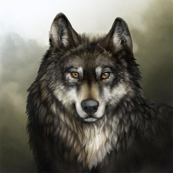 Красивые и прикольные картинки волка на аватарку - скачать бесплатно 13